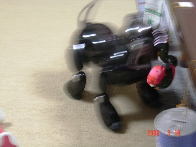 ・s-400ピエロ8079.jpg